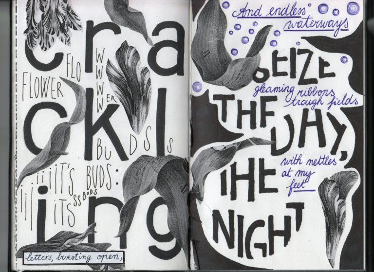 sightbook #1 (2020), zebra poetry film festival, berlijn – wereldpremière